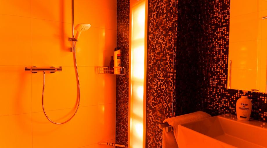 toekomst badkamers